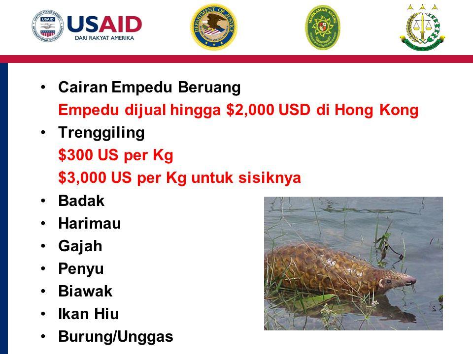 Cairan Empedu Beruang Empedu dijual hingga $2,000 USD di Hong Kong Trenggiling $300 US per Kg $3,000 US per Kg untuk sisiknya Badak Harimau Gajah Penyu Biawak Ikan Hiu Burung/Unggas
