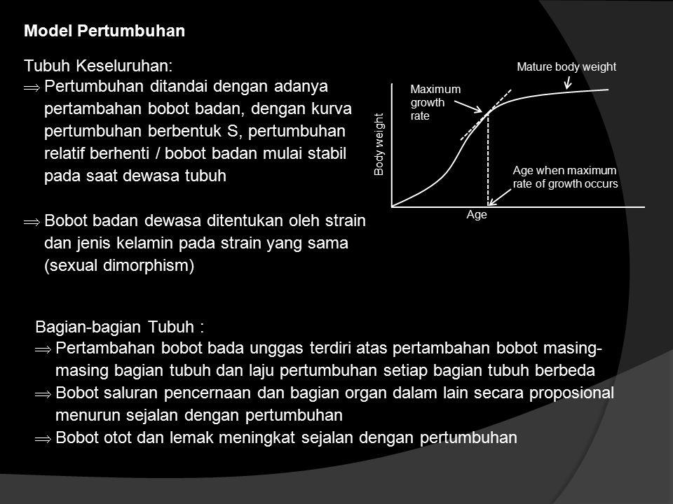 Model Pertumbuhan Tubuh Keseluruhan:  Pertumbuhan ditandai dengan adanya pertambahan bobot badan, dengan kurva pertumbuhan berbentuk S, pertumbuhan r