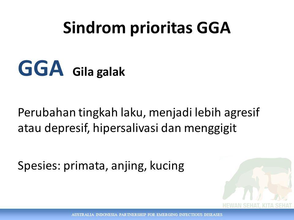 AUSTRALIA INDONESIA PARTNERSHIP FOR EMERGING INFECTIOUS DISEASES Sindrom prioritas GGA GGA Gila galak Perubahan tingkah laku, menjadi lebih agresif atau depresif, hipersalivasi dan menggigit Spesies: primata, anjing, kucing