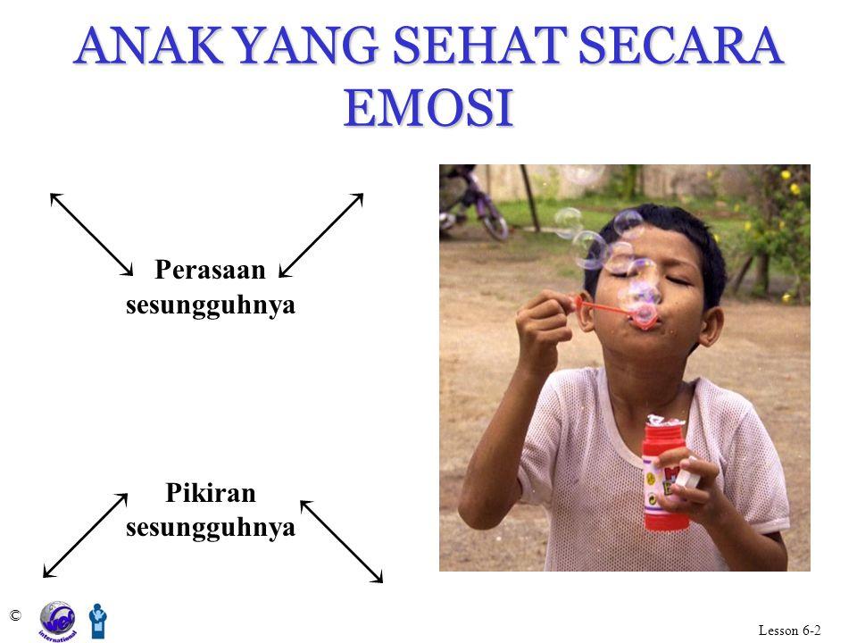 ANAK YANG SEHAT SECARA EMOSI © Lesson 6-2 Perasaan sesungguhnya Pikiran sesungguhnya