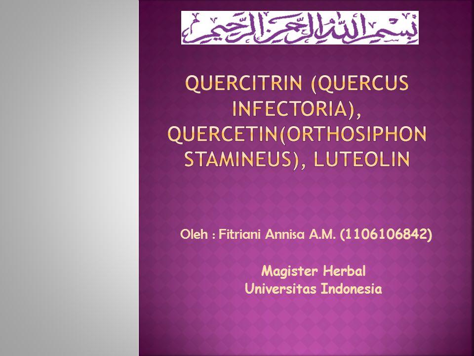 Oleh : Fitriani Annisa A.M. ( 1106106842) Magister Herbal Universitas Indonesia