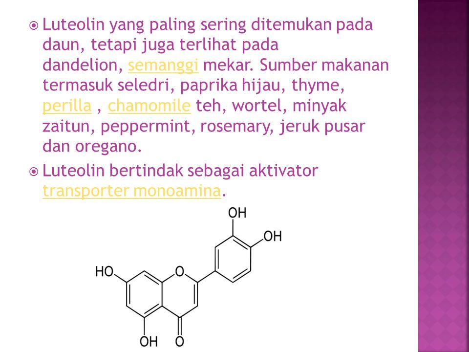  Luteolin yang paling sering ditemukan pada daun, tetapi juga terlihat pada dandelion, semanggi mekar. Sumber makanan termasuk seledri, paprika hijau