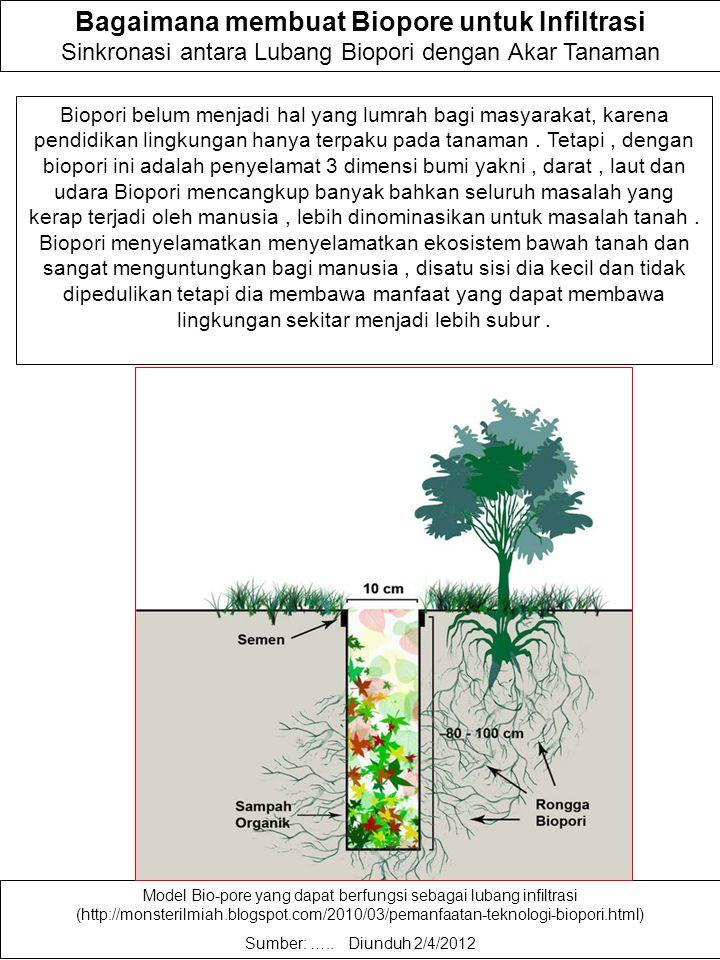 Resapan air hujan di halaman Keuntungan bio-pore: 1.Bio-pore dapat mengakumulasikan limbah organik secara efisien. Limbah dapur dan sampah pekarangan