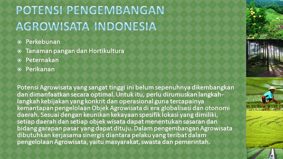  Perkebunan  Tanaman pangan dan Hortikultura  Peternakan  Perikanan Potensi Agrowisata yang sangat tinggi ini belum sepenuhnya dikembangkan dan di