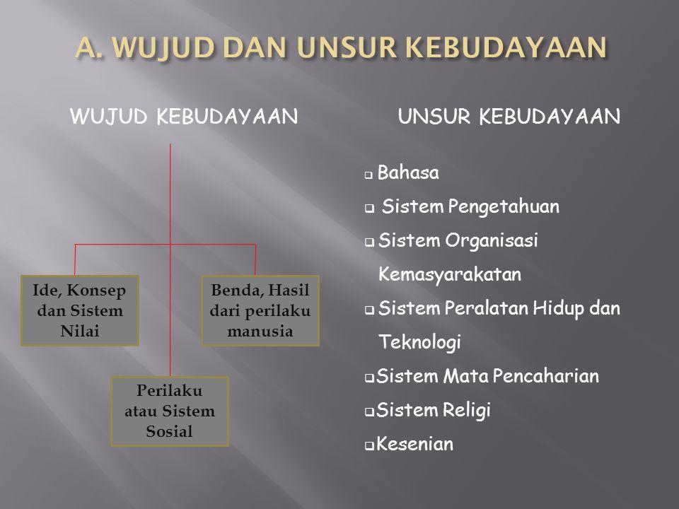 UNSUR KEBUDAYAAN  Bahasa  Sistem Pengetahuan  Sistem Organisasi Kemasyarakatan  Sistem Peralatan Hidup dan Teknologi  Sistem Mata Pencaharian  S