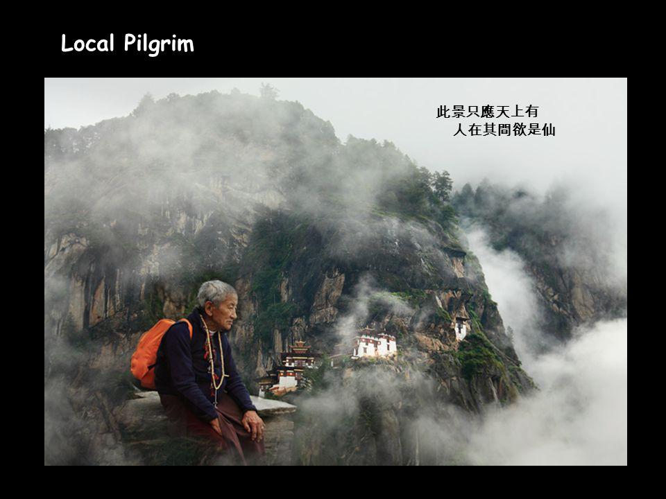 Click to Proceed Local Pilgrim 此景只應天上有 人在其間欲是仙