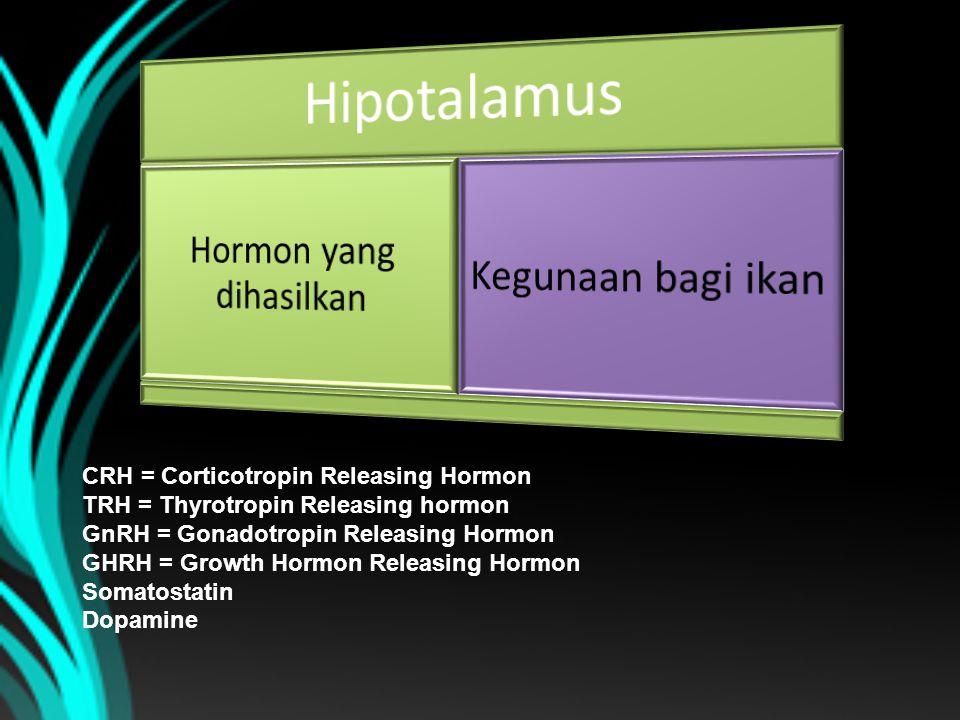 CRH = Corticotropin Releasing Hormon TRH = Thyrotropin Releasing hormon GnRH = Gonadotropin Releasing Hormon GHRH = Growth Hormon Releasing Hormon Som