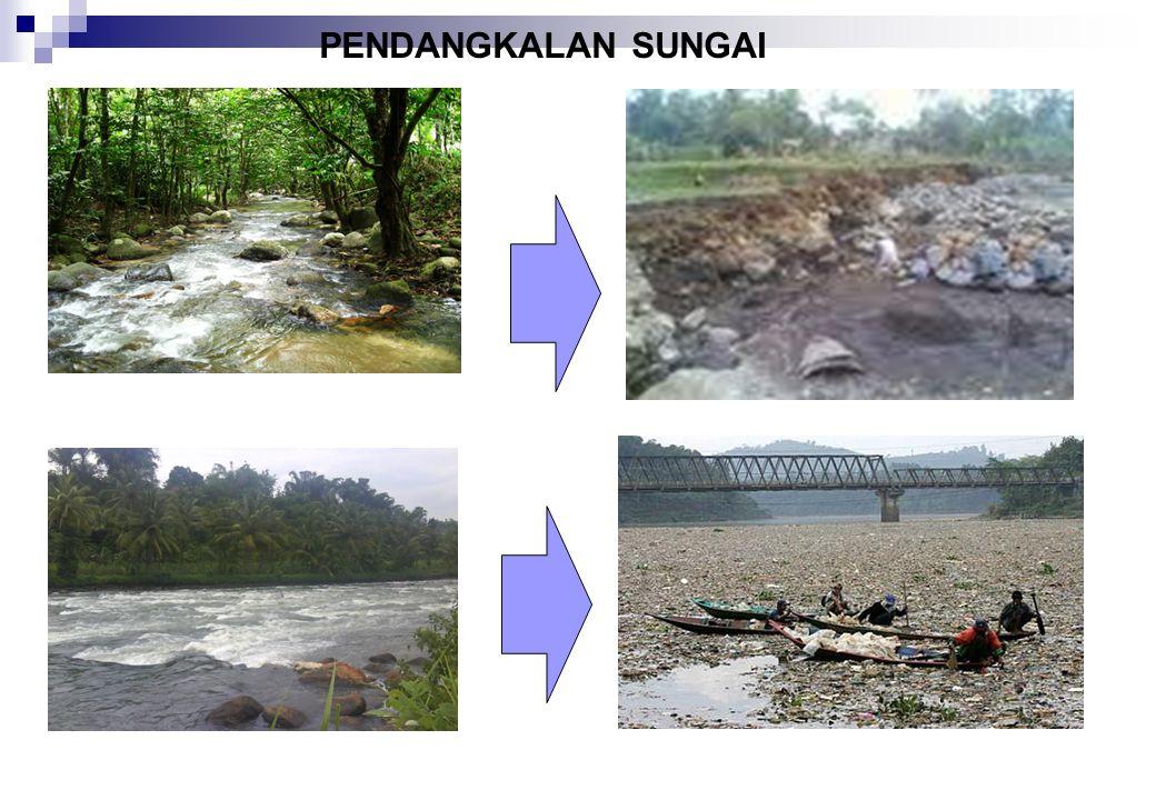 KERUSAKAN TERUMBU KARANG Kerusakan terumbu karang terjadi di semua perairan di Indonesia. Berdasarkan data kerusakan terumbu karang di Indonesia menca