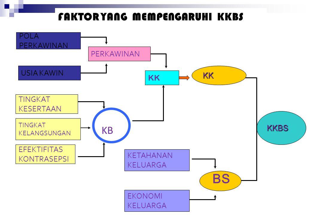Ciri-ciri Keluarga Indonesia 1. Kawin muda 2. Kawin cerai 3. Kawin antara keluarga miskin dengan Keluarga Miskin 4. Pendidikan kepala keluarga rata-ra
