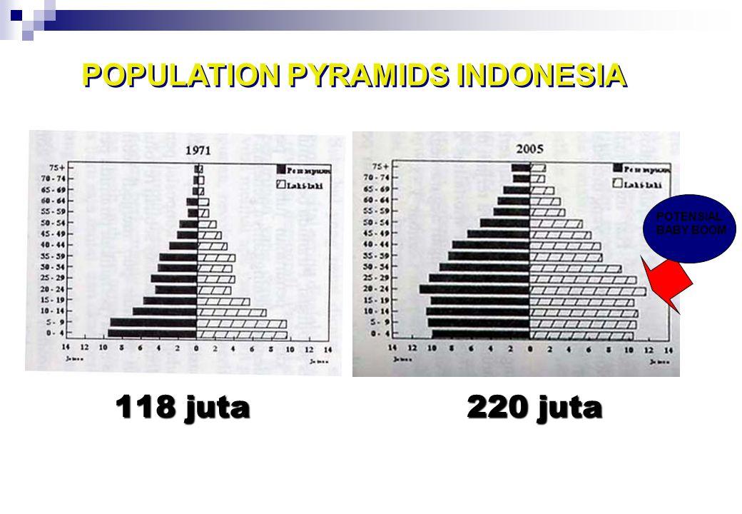 0.00 25.00 50.00 75.00 100.00 125.00 150.00 175.00 200.00 225.00 Sumber: Hasil Sensus & Supas, BPS PERKEMBANGAN PENDUDUK INDONESIA 1950 - 2005 PERKEMB