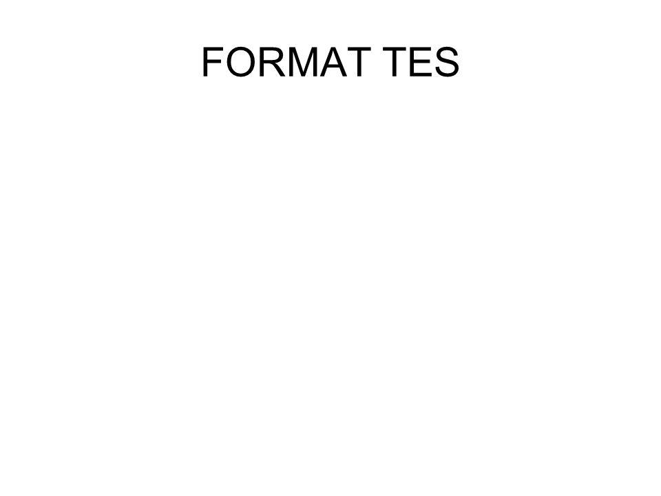FORMAT TES
