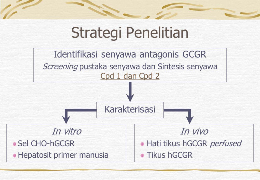 Karakterisasi Uji pengikatan reseptor glukagon Uji adenilil siklase - cAMP Uji gen reporter  -laktamase Uji sintesis glikogen pada hepatosit manusia Inhibisi glikogenolisis pada hati tikus Uji glukagon pada tikus dengan hGCGR