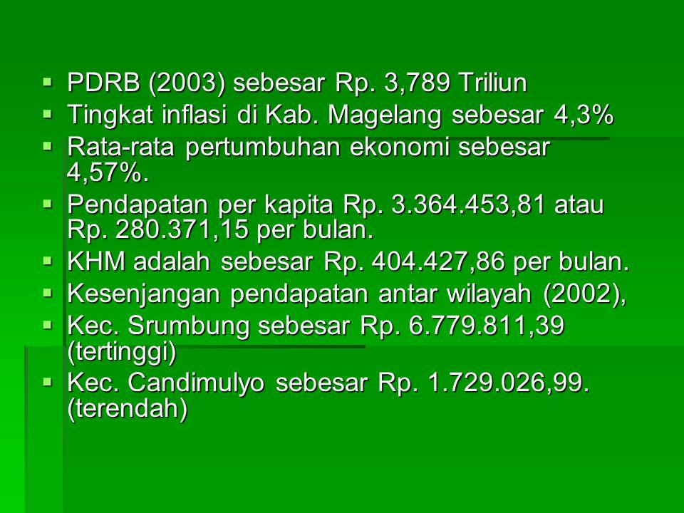  PDRB (2003) sebesar Rp. 3,789 Triliun  Tingkat inflasi di Kab. Magelang sebesar 4,3%  Rata-rata pertumbuhan ekonomi sebesar 4,57%.  Pendapatan pe