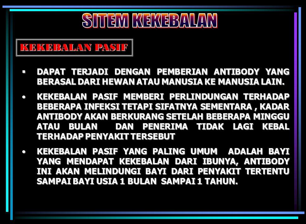 13 Sudin Kesmas Jakarta Utara  Penyebabnya Virus Hepatitis type B  Gejalanya tidak khas  Kelompok Resiko tinggi adalah secara vertikal bayi dari ib