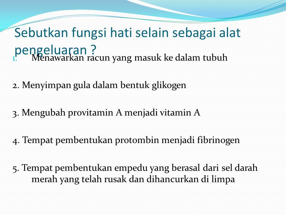 Sebutkan fungsi hati selain sebagai alat pengeluaran ? 1. Menawarkan racun yang masuk ke dalam tubuh 2. Menyimpan gula dalam bentuk glikogen 3. Mengub