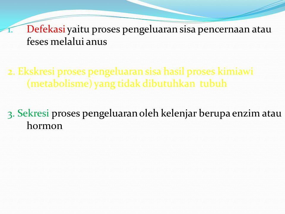 1. Defekasi yaitu proses pengeluaran sisa pencernaan atau feses melalui anus 2. Ekskresi proses pengeluaran sisa hasil proses kimiawi (metabolisme) ya