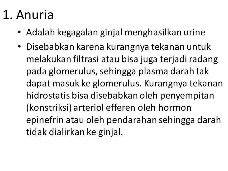 Macam-macam kelainan dan penyakit pada sistem ekskresi pada manusia diantaranya: 1.Anuria 2.Glikosuria 3.Albuminaria 4.Hematuria 5.Bilirubinaria 6.Batu ginjal 7.Nefritis Glomerulus 8.Pielonefritis 9.Kistitis 10.Nefrosis 11.Polisistik 12.Gagal Ginjal 13.Albino (Bule) 14.Diabetes Insipidus 15.Diabetes Mellitus