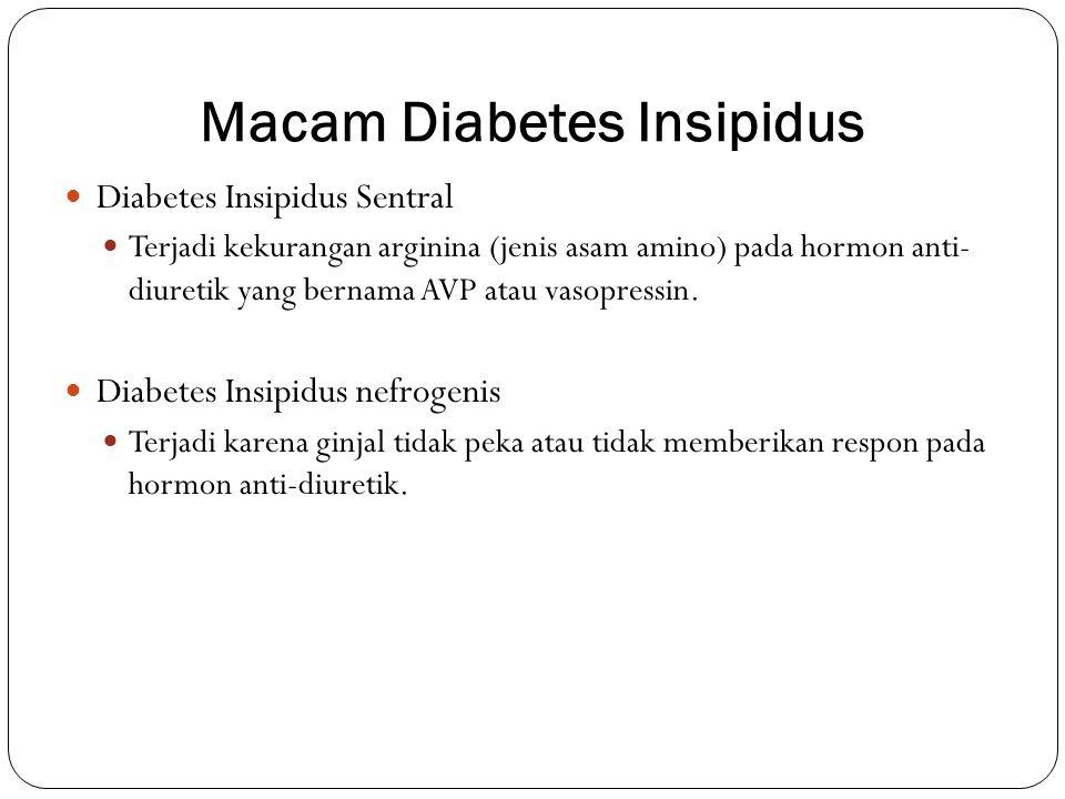 Macam Diabetes Insipidus Diabetes Insipidus Sentral Terjadi kekurangan arginina (jenis asam amino) pada hormon anti- diuretik yang bernama AVP atau va