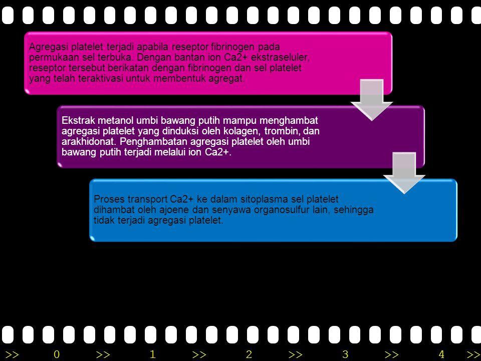 >>0 >>1 >> 2 >> 3 >> 4 >> Mekanisme Flavanoid untuk Anti-Inflamasi Terjadinya kerusakan pembuluh darah kapiler akibat radang menyebabkan peningkatan p