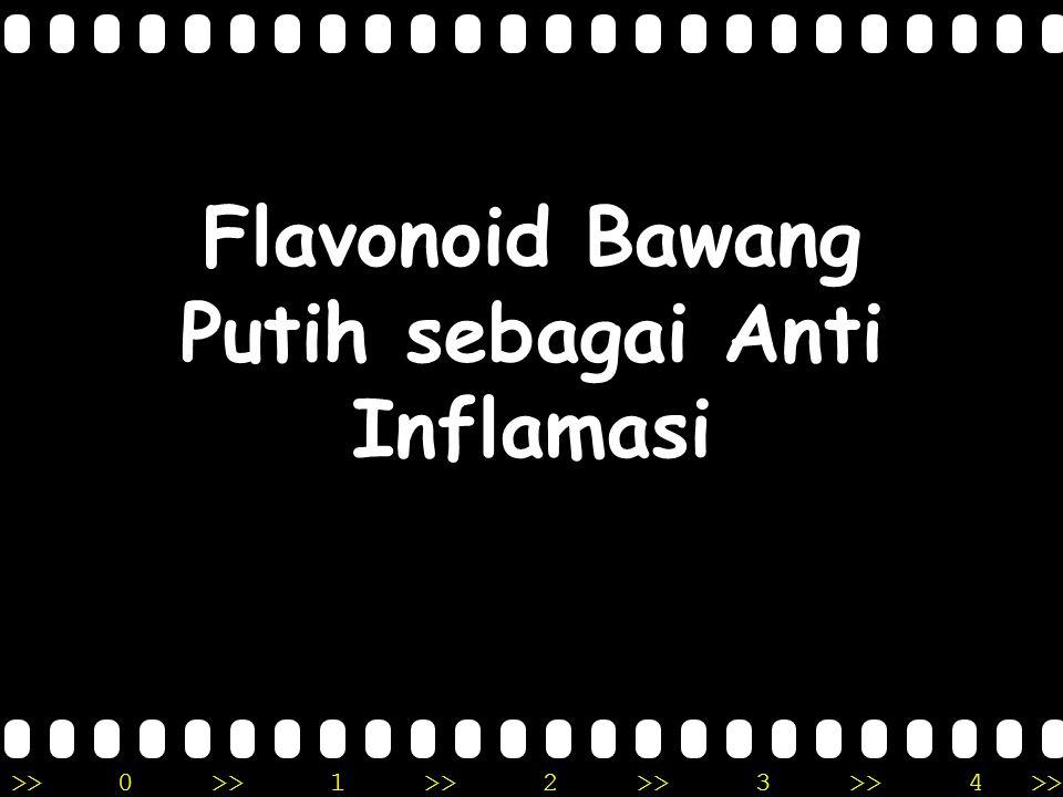 >>0 >>1 >> 2 >> 3 >> 4 >> Flavonoid Bawang Putih sebagai Anti Inflamasi