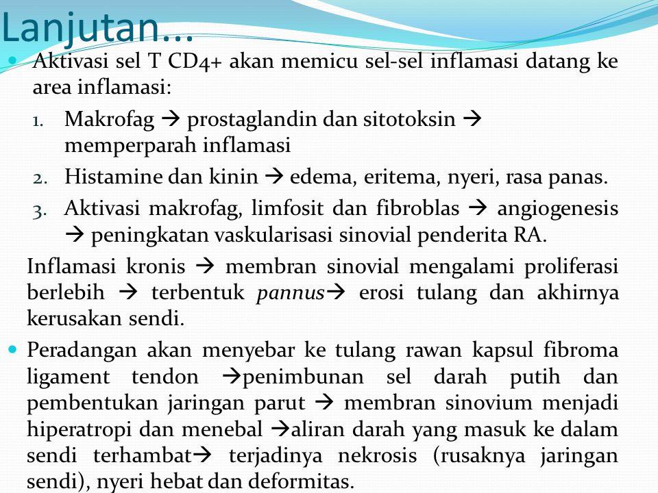 Lanjutan... Aktivasi sel T CD4+ akan memicu sel-sel inflamasi datang ke area inflamasi: 1. Makrofag  prostaglandin dan sitotoksin  memperparah infla