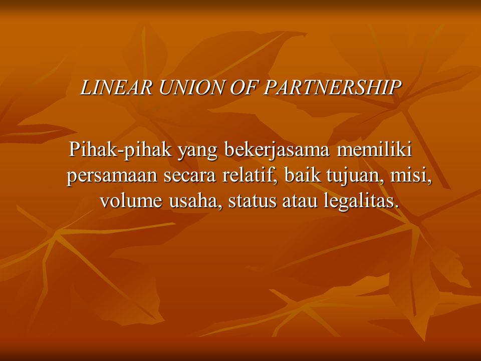 LINEAR UNION OF PARTNERSHIP Pihak-pihak yang bekerjasama memiliki persamaan secara relatif, baik tujuan, misi, volume usaha, status atau legalitas.