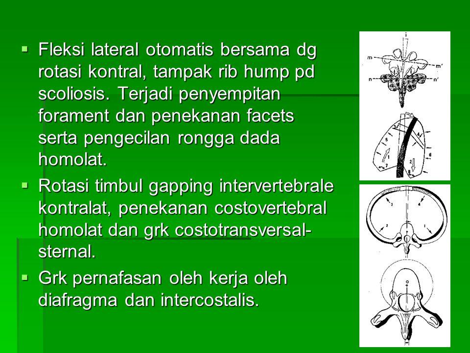  Fleksi lateral otomatis bersama dg rotasi kontral, tampak rib hump pd scoliosis. Terjadi penyempitan forament dan penekanan facets serta pengecilan