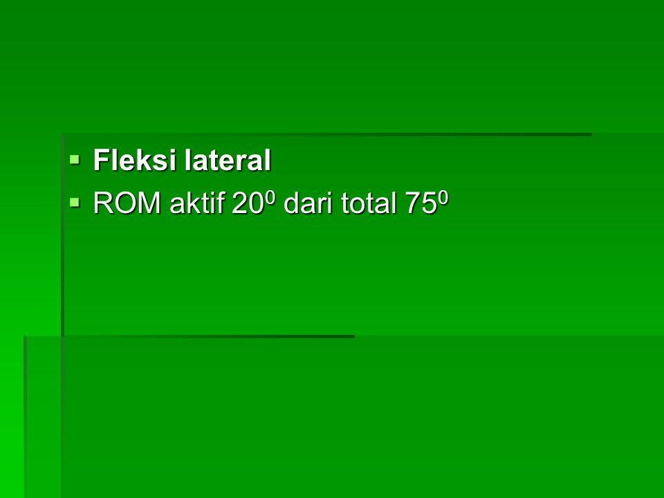  Fleksi lateral  ROM aktif 20 0 dari total 75 0