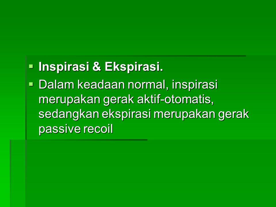  Inspirasi & Ekspirasi.  Dalam keadaan normal, inspirasi merupakan gerak aktif-otomatis, sedangkan ekspirasi merupakan gerak passive recoil
