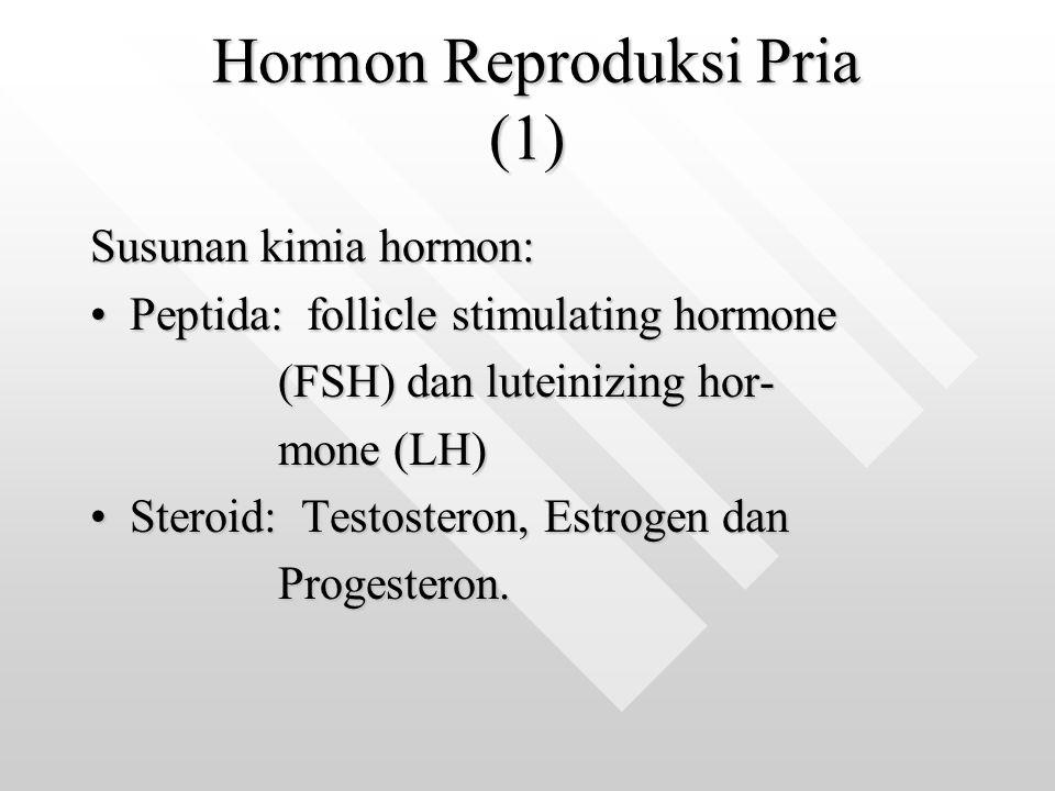 Hormon Reproduksi Pria (1) Hormon Reproduksi Pria (1) Susunan kimia hormon: Peptida: follicle stimulating hormonePeptida: follicle stimulating hormone