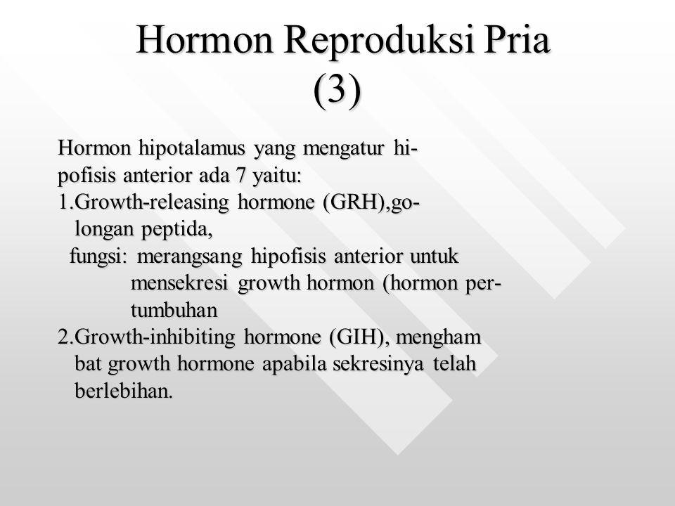 Hormon Reproduksi Pria (3) Hormon Reproduksi Pria (3) Hormon hipotalamus yang mengatur hi- pofisis anterior ada 7 yaitu: 1.Growth-releasing hormone (G