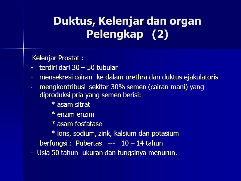 Duktus, Kelenjar dan organ Pelengkap (2) Kelenjar Prostat : Kelenjar Prostat : - terdiri dari 30 – 50 tubular - mensekresi cairan ke dalam urethra dan