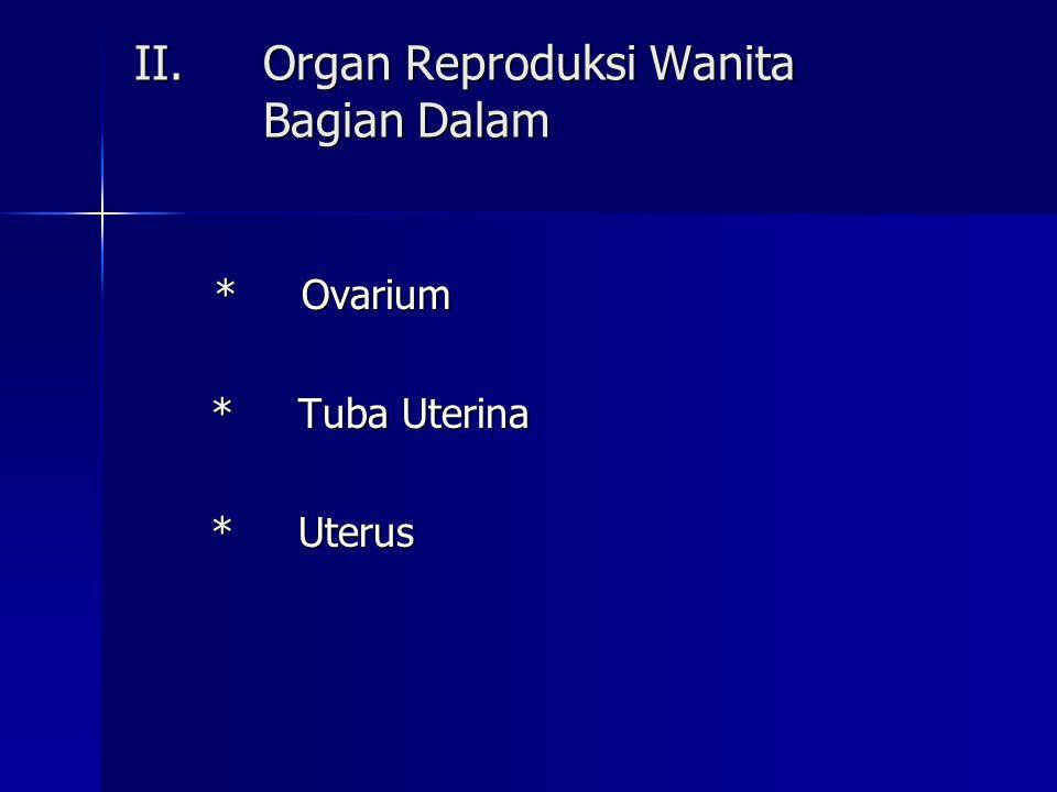 II.Organ Reproduksi Wanita Bagian Dalam II.Organ Reproduksi Wanita Bagian Dalam * Ovarium * Ovarium * Tuba Uterina * Tuba Uterina * Uterus * Uterus