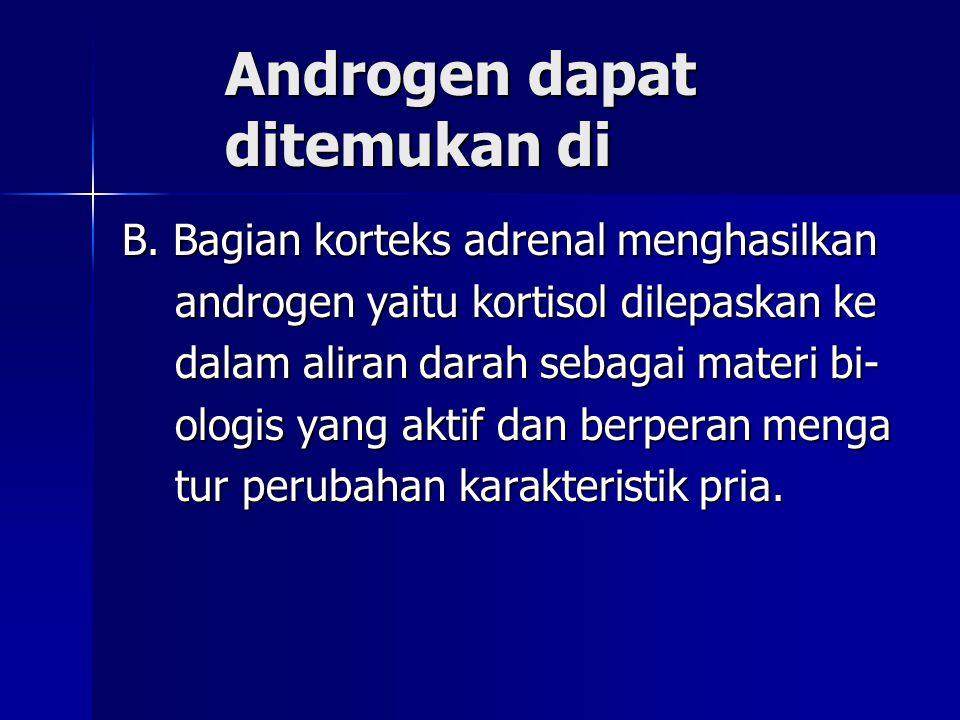 Androgen dapat ditemukan di Androgen dapat ditemukan di B. Bagian korteks adrenal menghasilkan androgen yaitu kortisol dilepaskan ke androgen yaitu ko