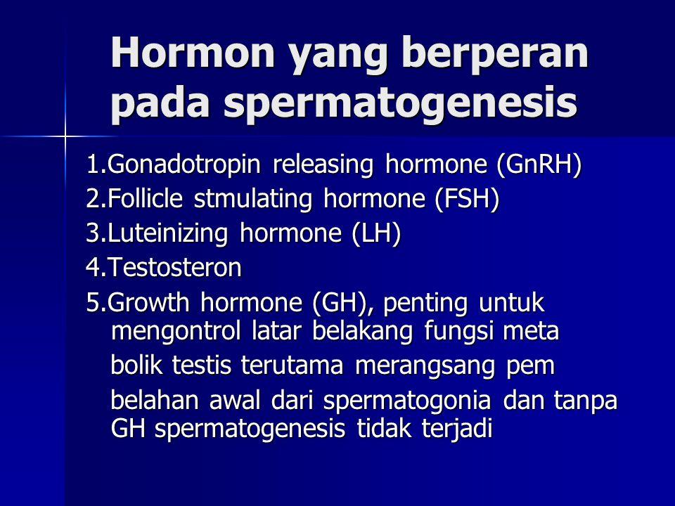 Hormon yang berperan pada spermatogenesis Hormon yang berperan pada spermatogenesis 1.Gonadotropin releasing hormone (GnRH) 2.Follicle stmulating horm