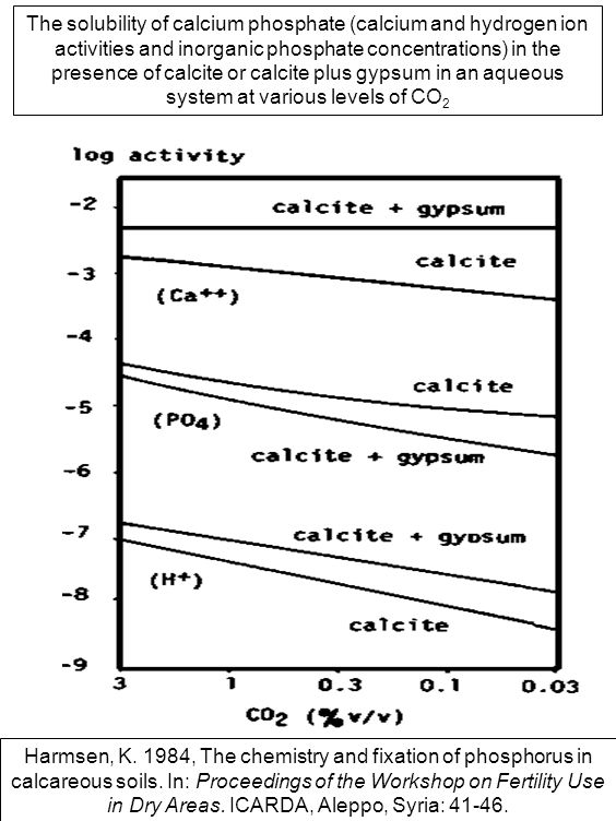 The solubility of calcium phosphate (calcium and hydrogen ion activities and inorganic phosphate concentrations) in the presence of calcite or calcite