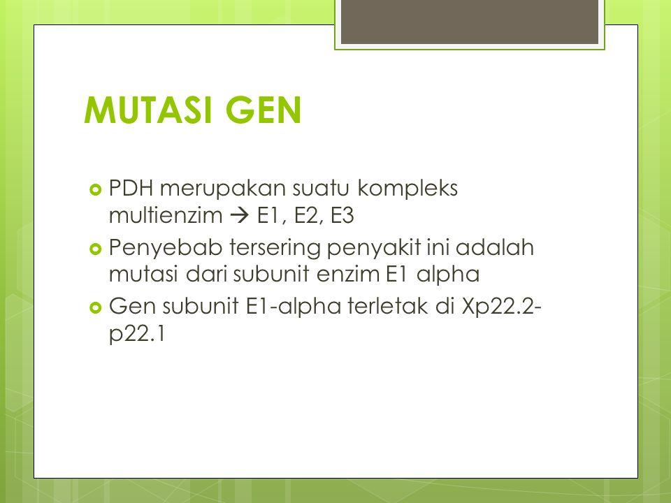 MUTASI GEN  PDH merupakan suatu kompleks multienzim  E1, E2, E3  Penyebab tersering penyakit ini adalah mutasi dari subunit enzim E1 alpha  Gen subunit E1-alpha terletak di Xp22.2- p22.1