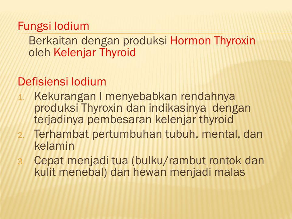 Fungsi Iodium Berkaitan dengan produksi Hormon Thyroxin oleh Kelenjar Thyroid Defisiensi Iodium 1. Kekurangan I menyebabkan rendahnya produksi Thyroxi