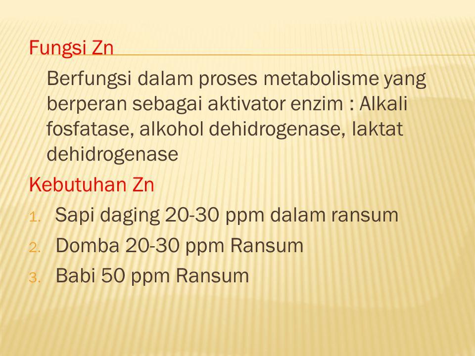 Fungsi Zn Berfungsi dalam proses metabolisme yang berperan sebagai aktivator enzim : Alkali fosfatase, alkohol dehidrogenase, laktat dehidrogenase Keb