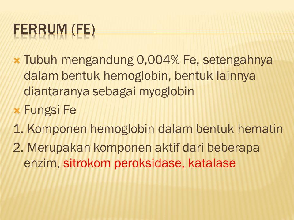  Tubuh mengandung 0,004% Fe, setengahnya dalam bentuk hemoglobin, bentuk lainnya diantaranya sebagai myoglobin  Fungsi Fe 1. Komponen hemoglobin dal