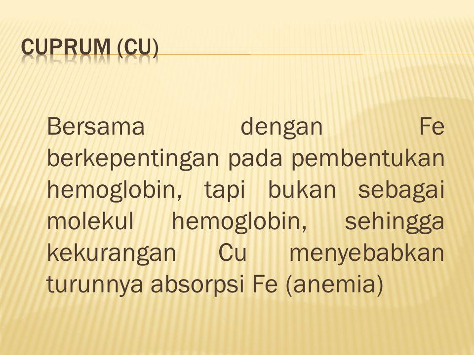Bersama dengan Fe berkepentingan pada pembentukan hemoglobin, tapi bukan sebagai molekul hemoglobin, sehingga kekurangan Cu menyebabkan turunnya absorpsi Fe (anemia)