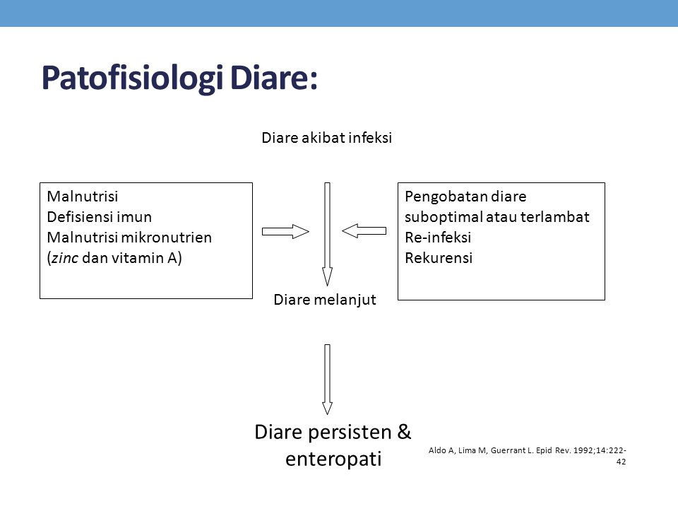 Patofisiologi Diare: Diare akibat infeksi Diare melanjut Diare persisten & enteropati Malnutrisi Defisiensi imun Malnutrisi mikronutrien (zinc dan vit