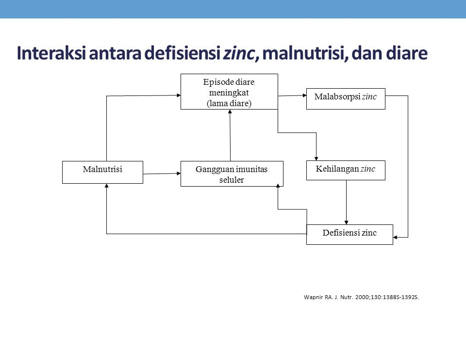 Interaksi antara defisiensi zinc, malnutrisi, dan diare Episode diare meningkat (lama diare) Malabsorpsi zinc Gangguan imunitas seluler Kehilangan zin