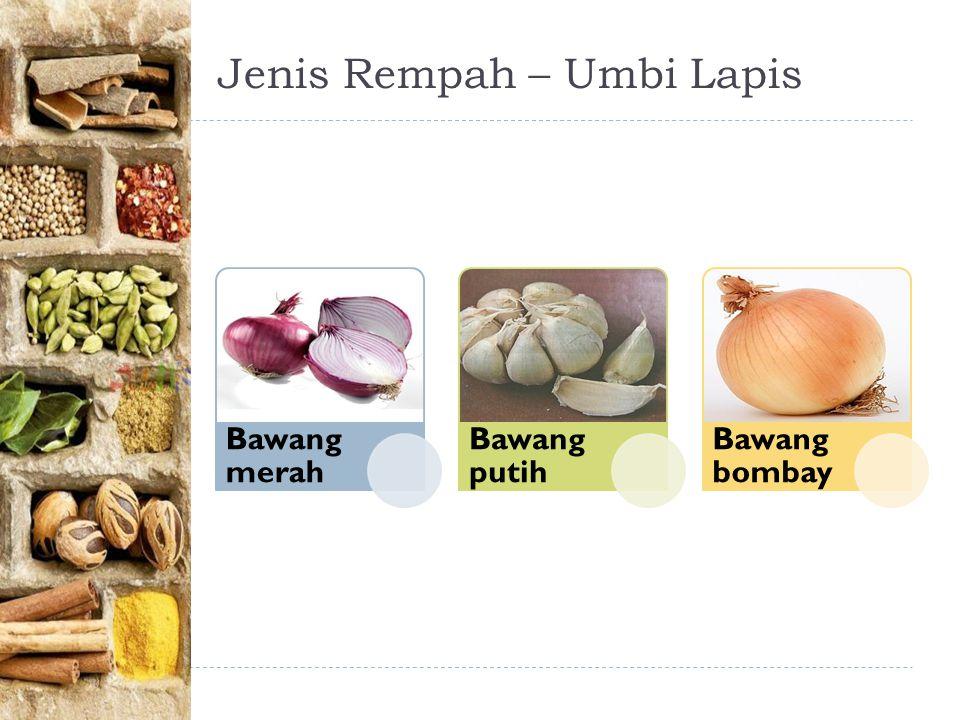Jenis Rempah – Umbi Lapis Bawang merah Bawang putih Bawang bombay