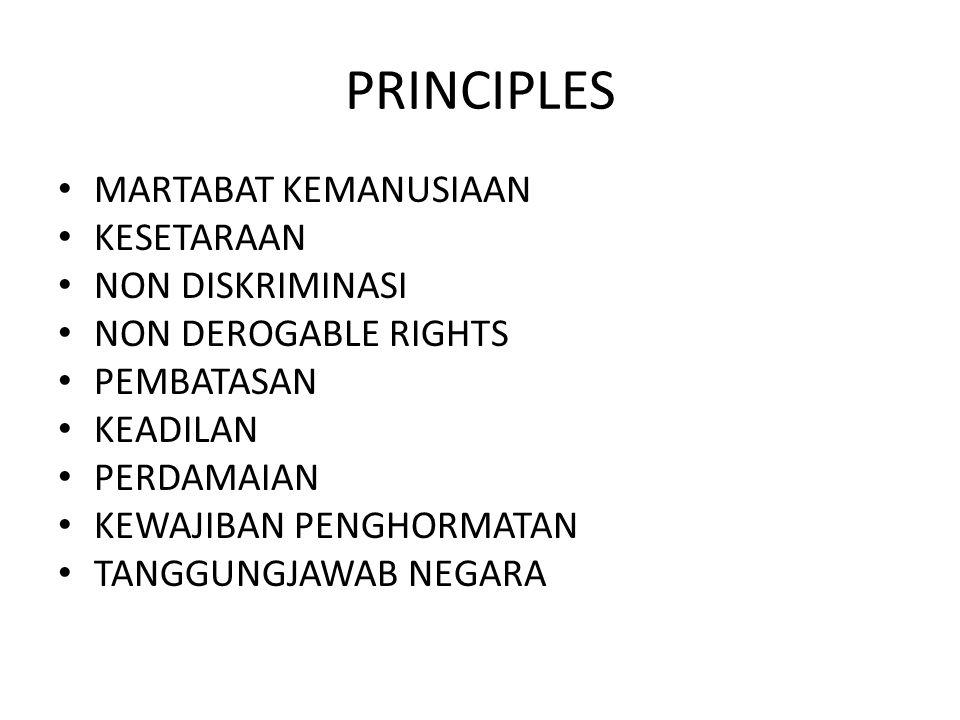 PRINCIPLES MARTABAT KEMANUSIAAN KESETARAAN NON DISKRIMINASI NON DEROGABLE RIGHTS PEMBATASAN KEADILAN PERDAMAIAN KEWAJIBAN PENGHORMATAN TANGGUNGJAWAB N