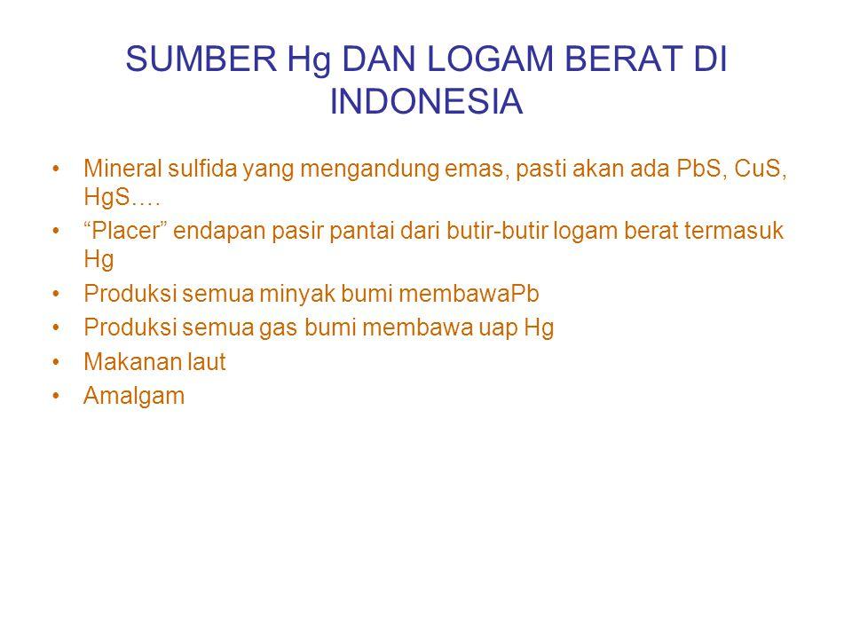 SUMBER Hg DAN LOGAM BERAT DI INDONESIA Mineral sulfida yang mengandung emas, pasti akan ada PbS, CuS, HgS….