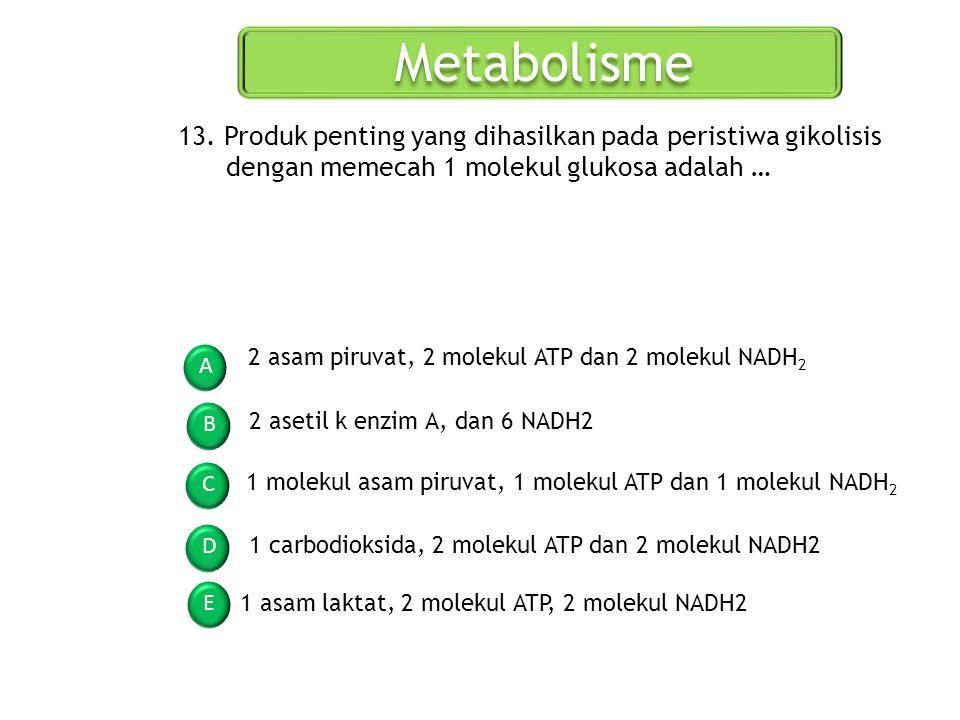 Metabolisme A B C D E 13. Produk penting yang dihasilkan pada peristiwa gikolisis dengan memecah 1 molekul glukosa adalah … 2 asam piruvat, 2 molekul