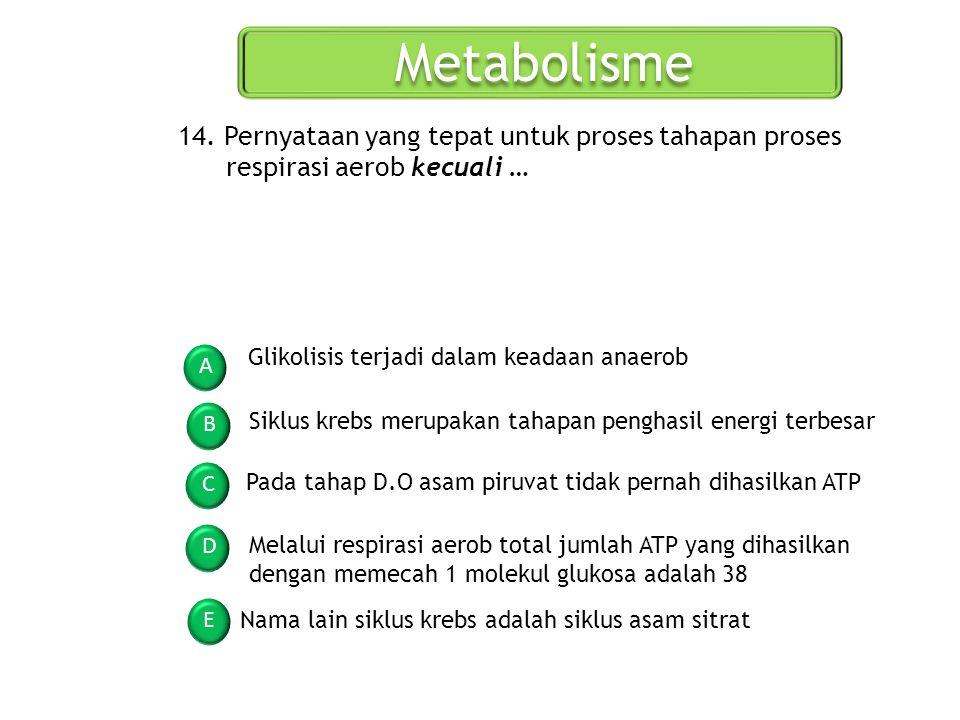 Metabolisme A B C D E 14. Pernyataan yang tepat untuk proses tahapan proses respirasi aerob kecuali … Glikolisis terjadi dalam keadaan anaerob Siklus