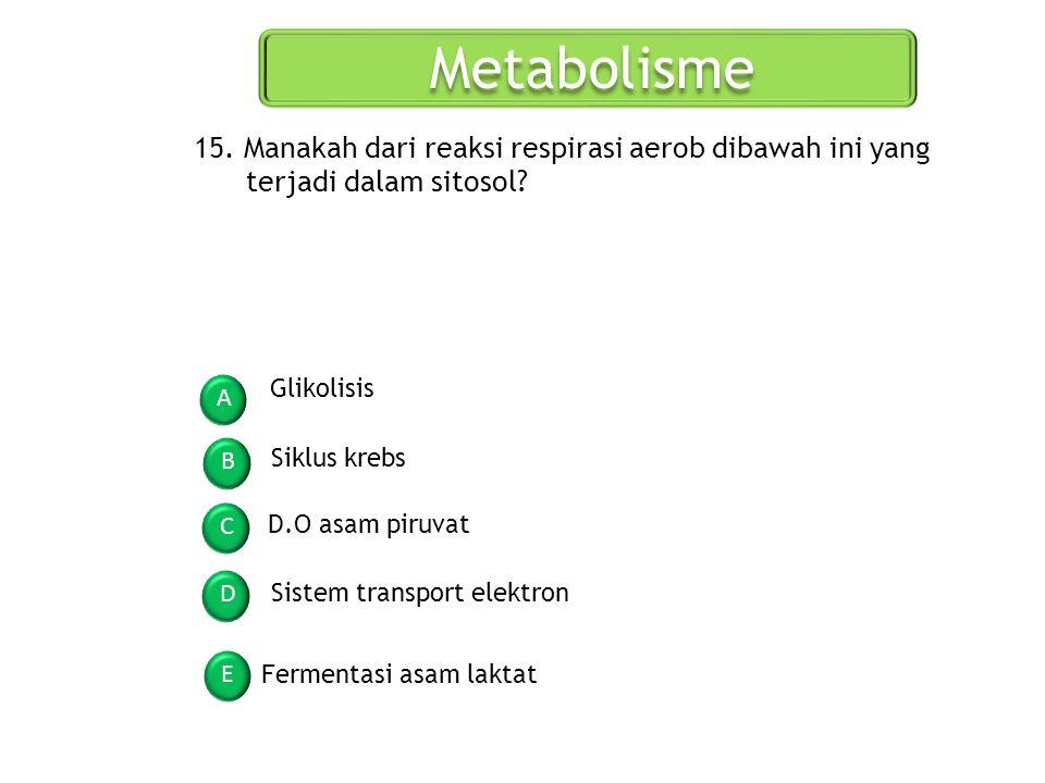 Metabolisme A B C D E 15. Manakah dari reaksi respirasi aerob dibawah ini yang terjadi dalam sitosol? Glikolisis Siklus krebs D.O asam piruvat Sistem