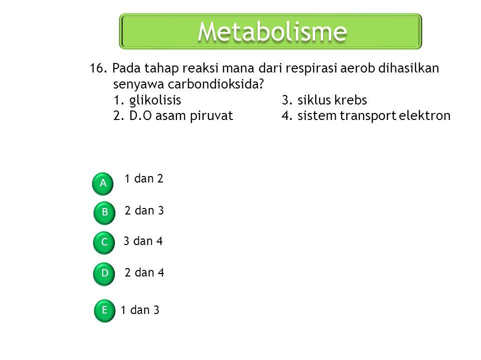 Metabolisme A B C D E 16. Pada tahap reaksi mana dari respirasi aerob dihasilkan senyawa carbondioksida? 1. glikolisis3. siklus krebs 2. D.O asam piru